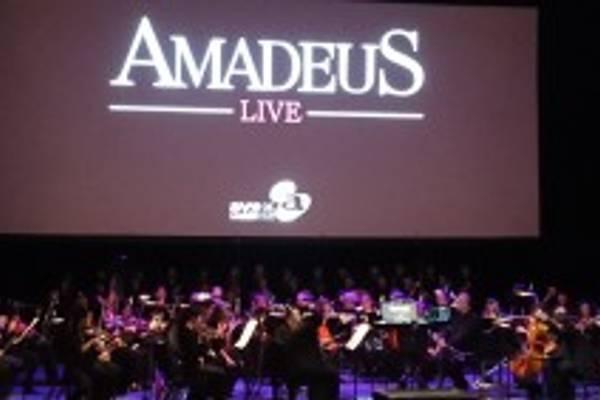 CONCERT REPORT |  Tutti Contenti at Amadeus Live