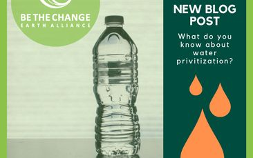 Action Pack Stories: Justice - The Privatization of Water