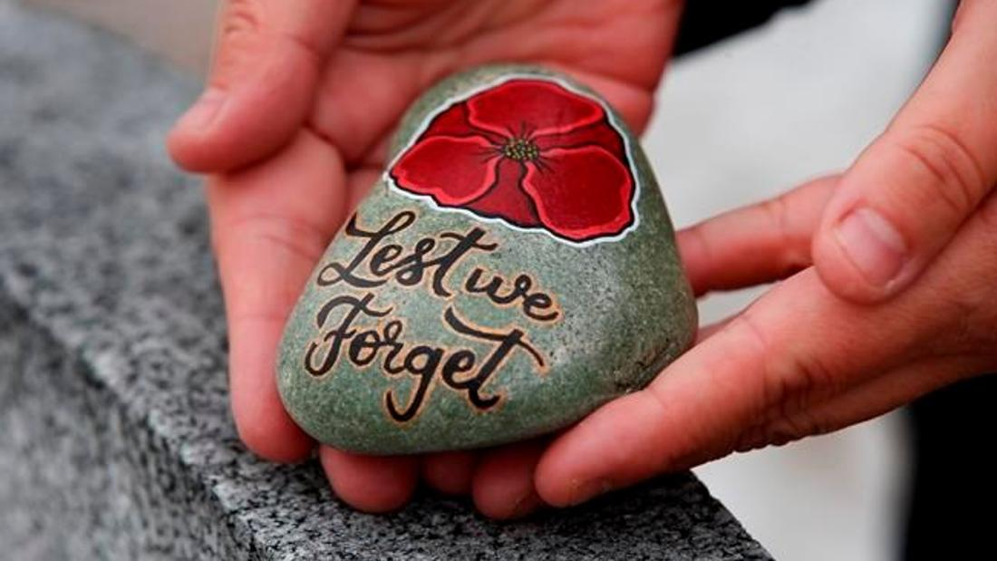 'It means so much:' Families thankful for painted poppy rocks on Remembrance Day