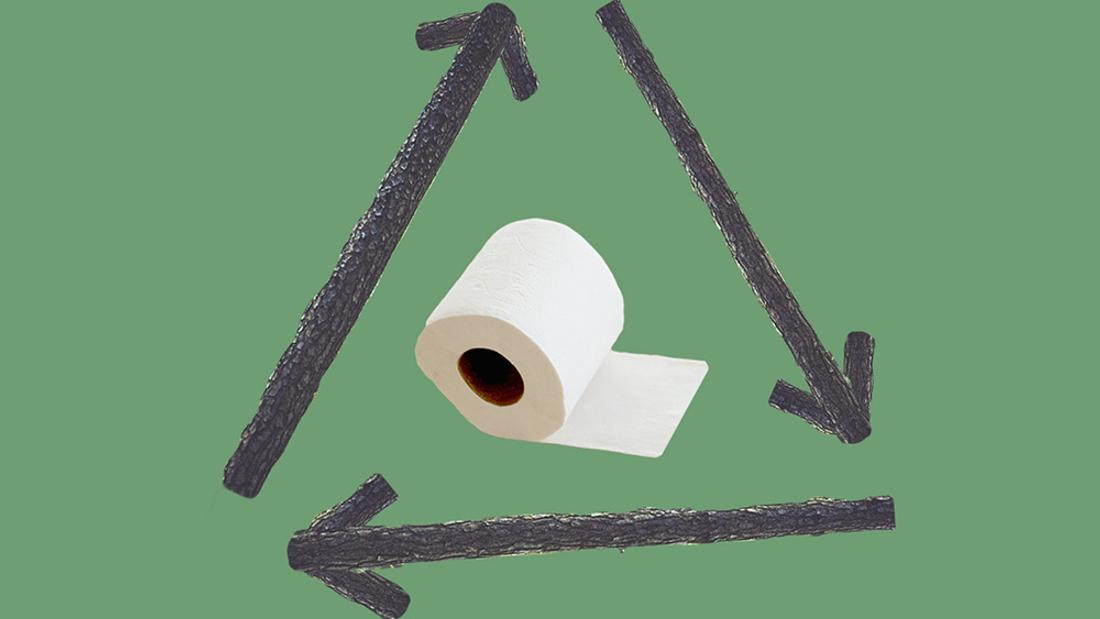 What Happened to All the Green Toilet Paper?