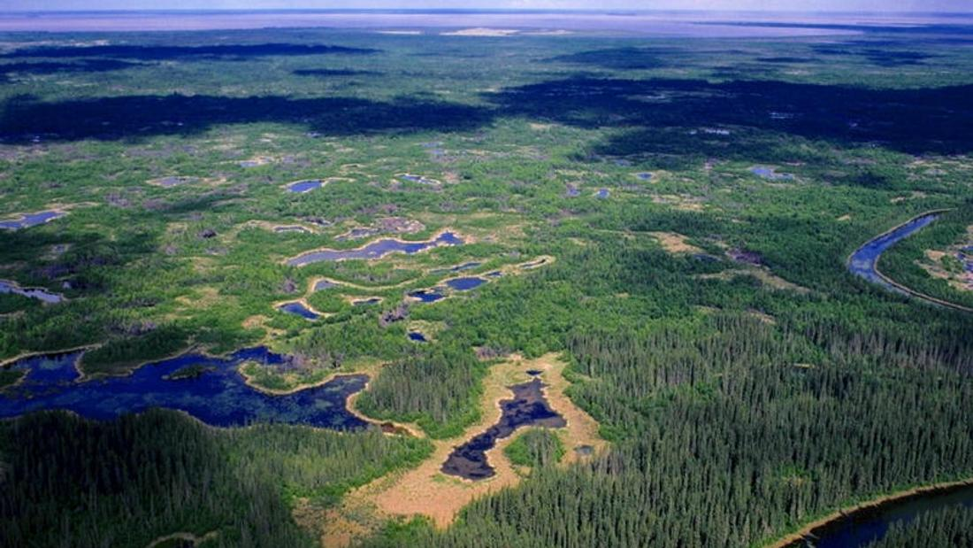 UNESCO threat results in water management money for Wood Buffalo world heritage site