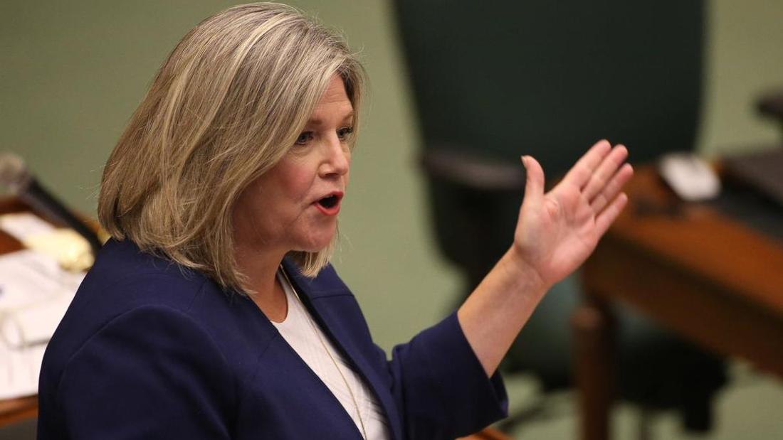 Ontario NDP releases plan to end for-profit long-term care