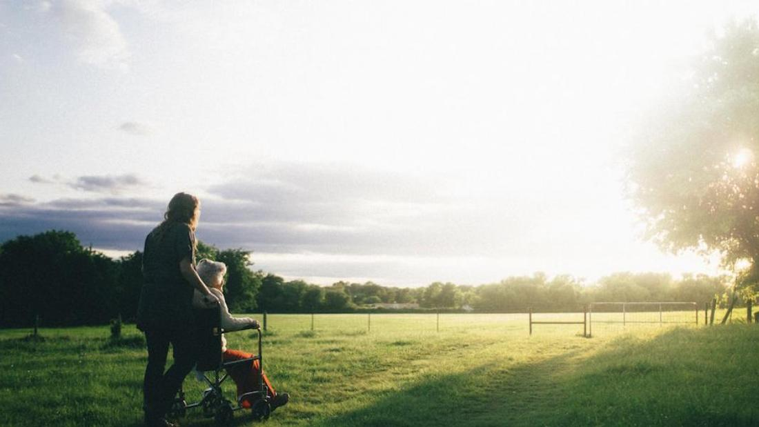 From food to frailty: the link between long-term care and land concentration