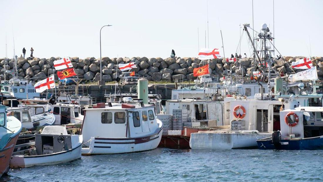 Mi'kmaq chief slams Nova Scotia fishery violence: 'They are getting away with these terrorist, hate crime acts'