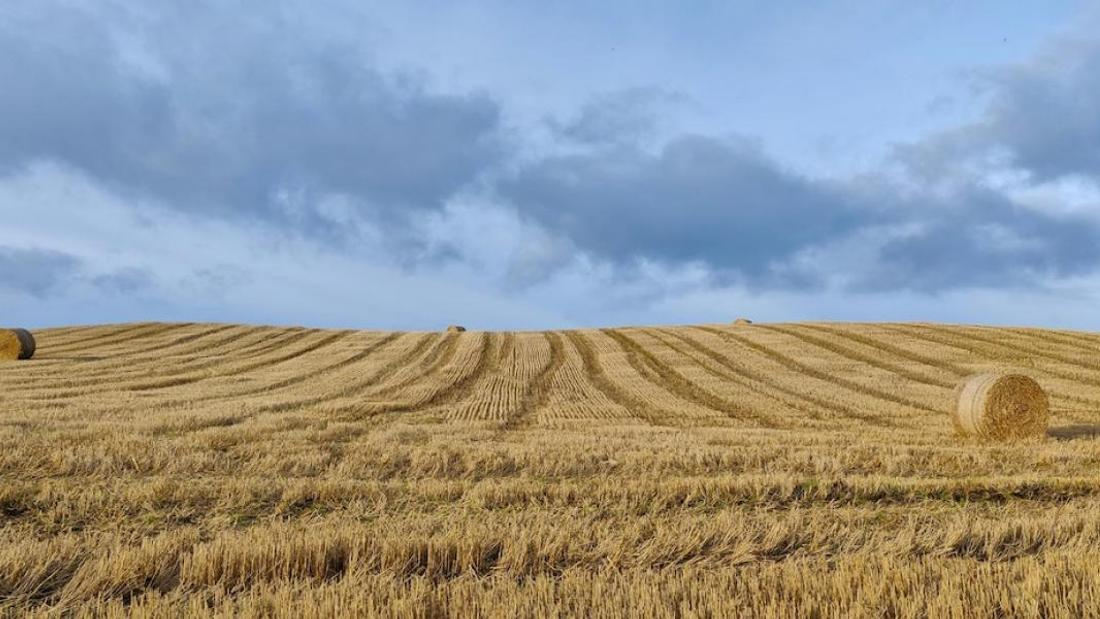 How pension funds seek to profit from corporate agriculture