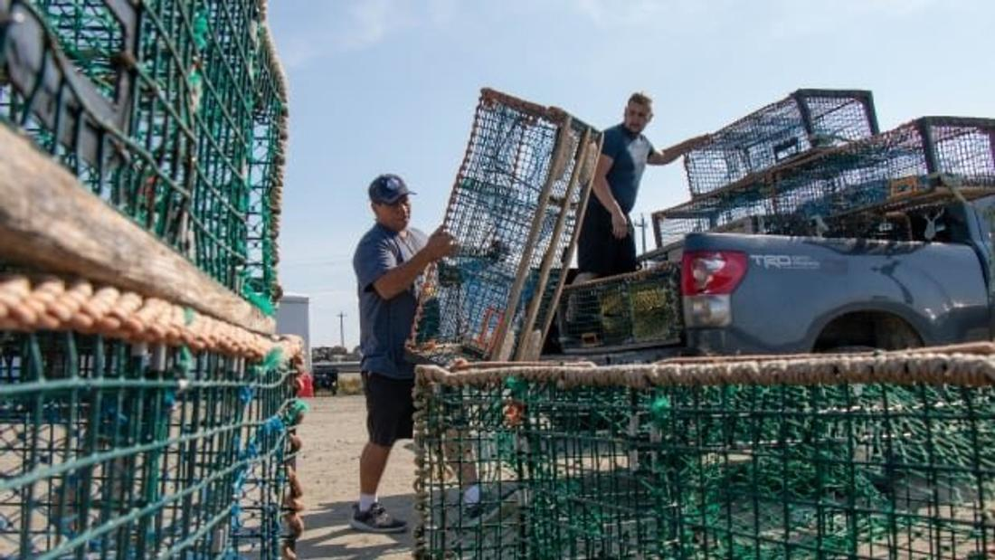 Judge issues injunction to end interference, threats against Sipekne'katik fishery