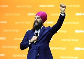 NDP aims to project unity, sincerity following internal dust-ups, extreme proposals