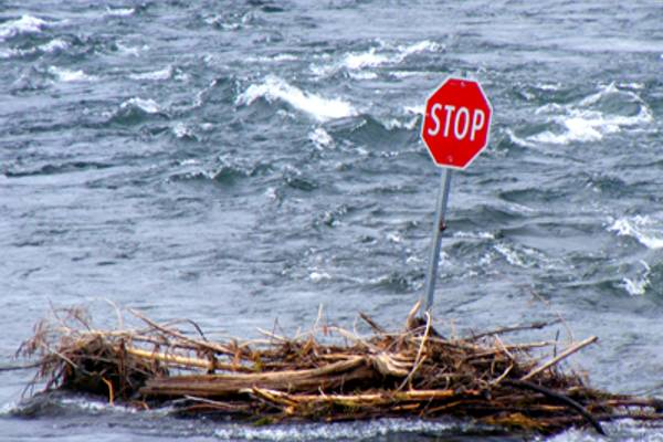 Mount Polley: Three Months On and Still No Accountability