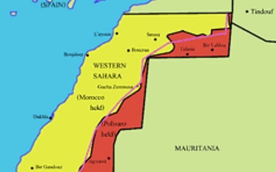 Michael Beer's Op-Ed Calling for an End to the Conflict in Western Sahara