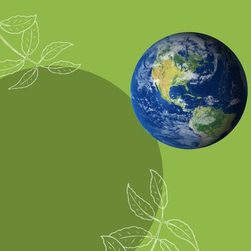 Nouveau Pacte Vert