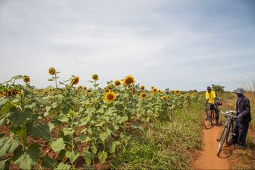 Reclaiming the Desert in Burkina Faso